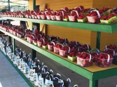 tinnock-farm-shop-gorey-wexford-strawberries