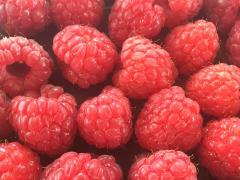 First Raspberries 2016, Wexford Strawberries, Irish Fruit Farm