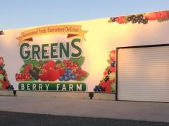 packhouse-and-refrigeration-at-greens-berry-farm-smaller