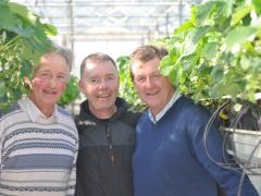 Jimmy Kearns, John Green, John Mernagh