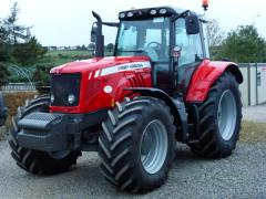 Wexford Fruit Farm Work Horse Massey Ferguson 6480 Irish Farms Ireland Greens Berry Farm Gorey Wexford Ireland