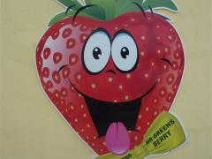 Mr Greens Berry, Greens Berry Farm Wexford Ireland