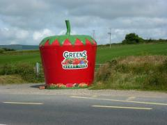 Irelands Biggest Strawberry Irish Fruit at Greens Berry Farm Gorey Wexford Ireland