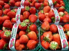 Baskets Of Fresh Wexford Strawberries Irish Fruit Farms Greens Berry Farm Gorey Wexford Ireland