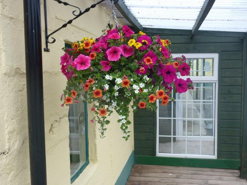 Greens Berry Farm, Courtown Road, Gorey, Wexford, Ireland, Irish Fruit Farm