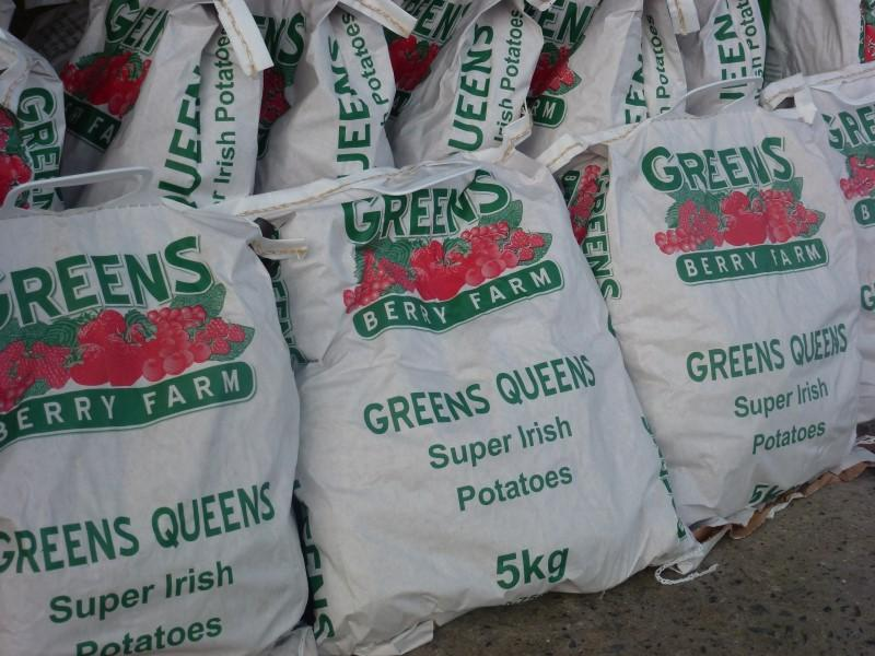 Greens Floury British Queens at Greens Berry Farm Gorey, Wexford, Ireland, Irish Fruit Farm