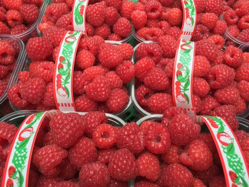 Half Kilo Raspberry, Wexford Strawberries, Irish Fruit Farm