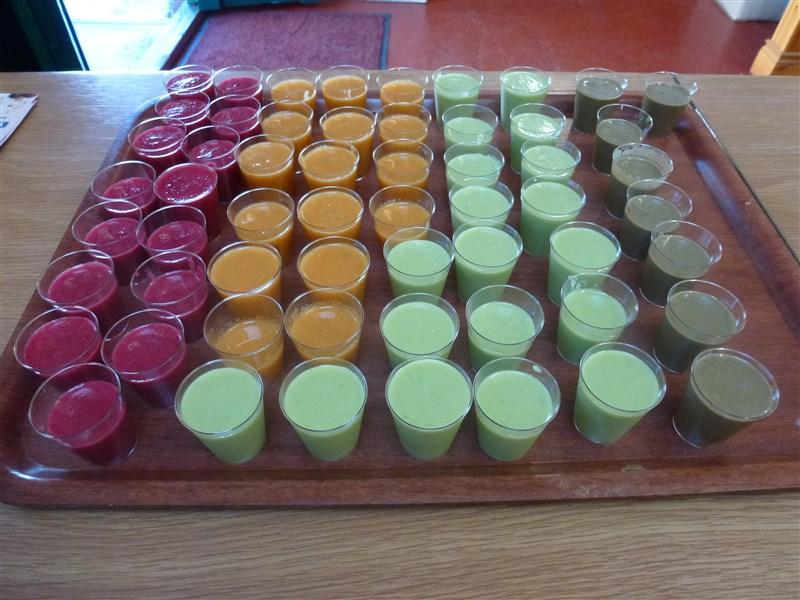 Smoothie  Samples - Greens Berry Farm Wexford Ireland