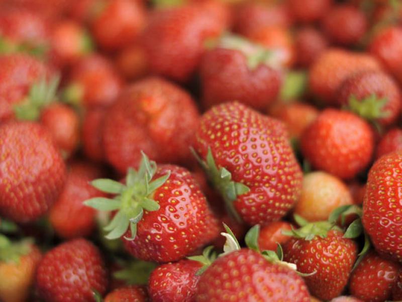 Wexford Strawberries For Irish Fruit Jam Greens Berry Farm Gorey Wexford Ireland