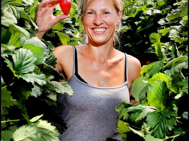 Zuzana picking Fresh Strawberries.