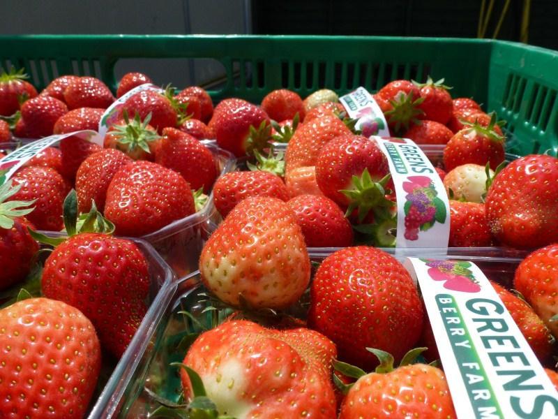 Fresh Half Kilo Wexford Strawberries Greens Fruit Farm