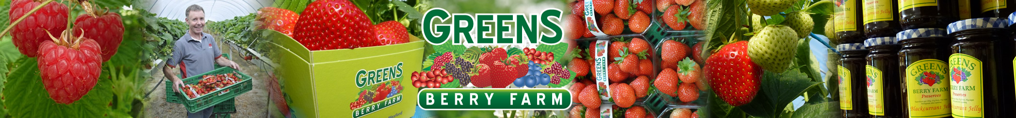 Green's Berry Farm | Wexford Strawberries and Fruit Farm Produce
