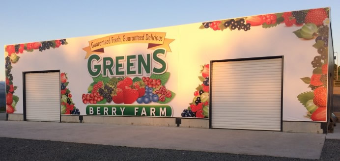Greens Berry Farm Strawbery Punnets